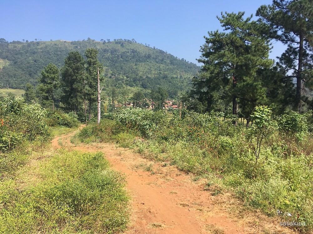 Mountain path by sasakwa