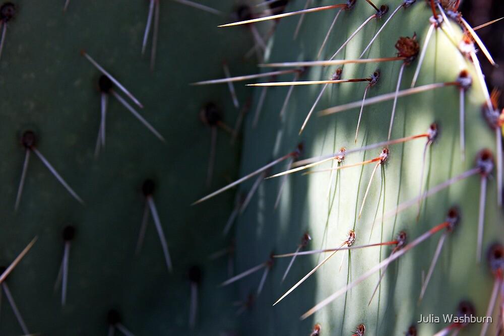 Prickly Pear Needles by Julia Washburn