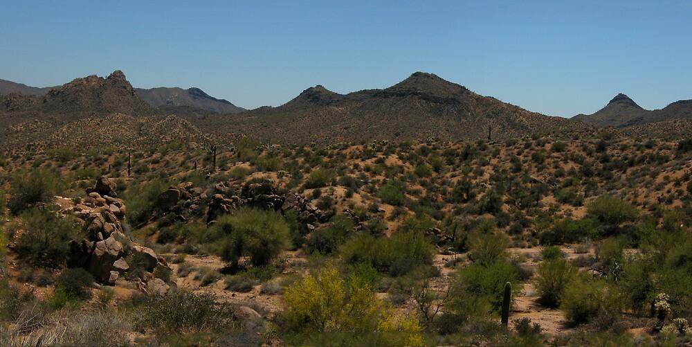 Superstition Mountains Panorama by John  Kapusta