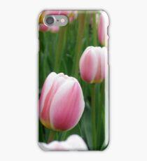 Tulips 9 iPhone Case/Skin