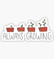 Always Growing Sticker