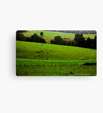 the valley Canvas Print