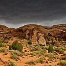 Maelstrom: Landscape Arch  by Nick  Taylor