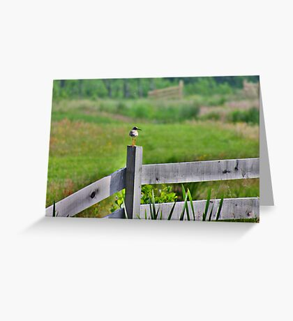 Redshank Fence Greeting Card