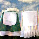 Life of a Homemaker...a Story of Aprons by Alma Lee