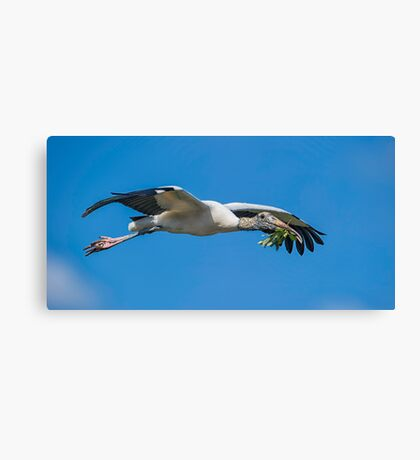 Home Reno Stork Canvas Print