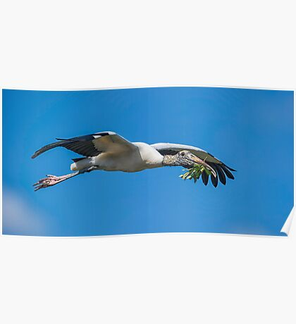 Home Reno Stork Poster