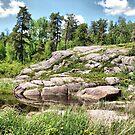 rocky view by Cheryl Dunning