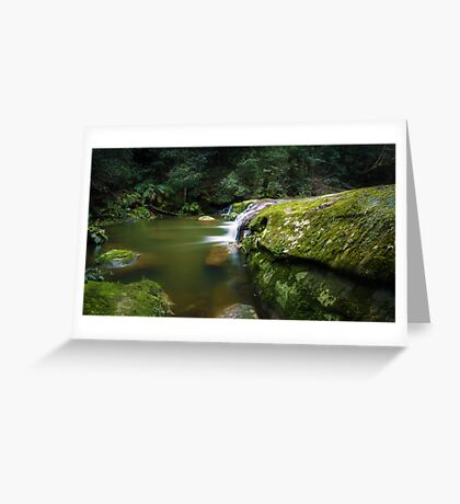 Bush Rock Garden Greeting Card