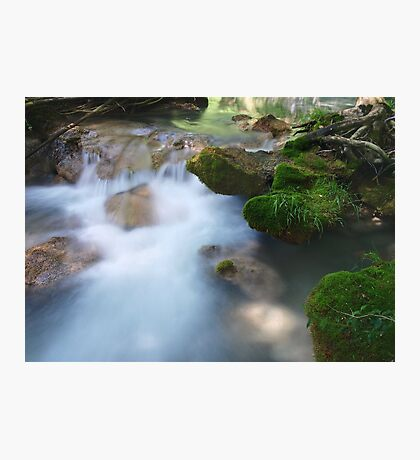 Moss on the Water Photographic Print