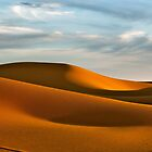 The Sahara... by Alison  Brown