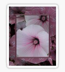 Framed Lavatera Sticker