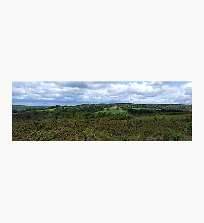 Ashdown Forest Panorama Photographic Print