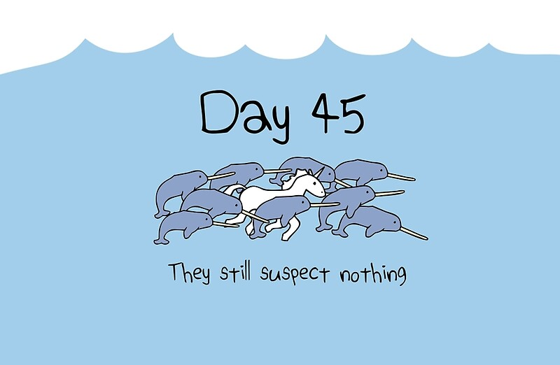 """Day 45. They still suspect nothing (Narwhals + Unicorn)"""" Studio ..."""