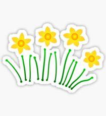 Daffodils!!! Sticker