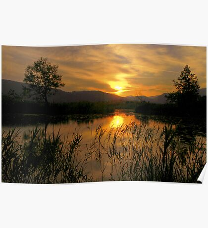 Sunset in the pond Poster