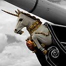 Unicorns do exist. by dgscotland