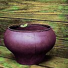 Pot Full of Quiet by Rick Wollschleger