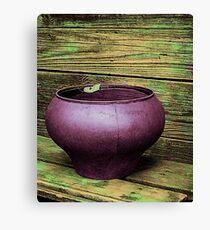 Pot Full of Quiet Canvas Print