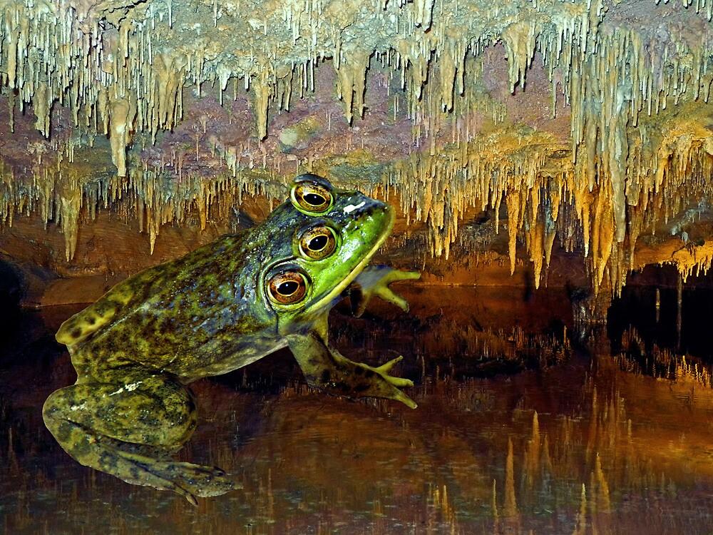 Triopse Frog in a Cave Fantasy by Lynda Lehmann