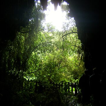 Glow Worm Caverns de cadellin