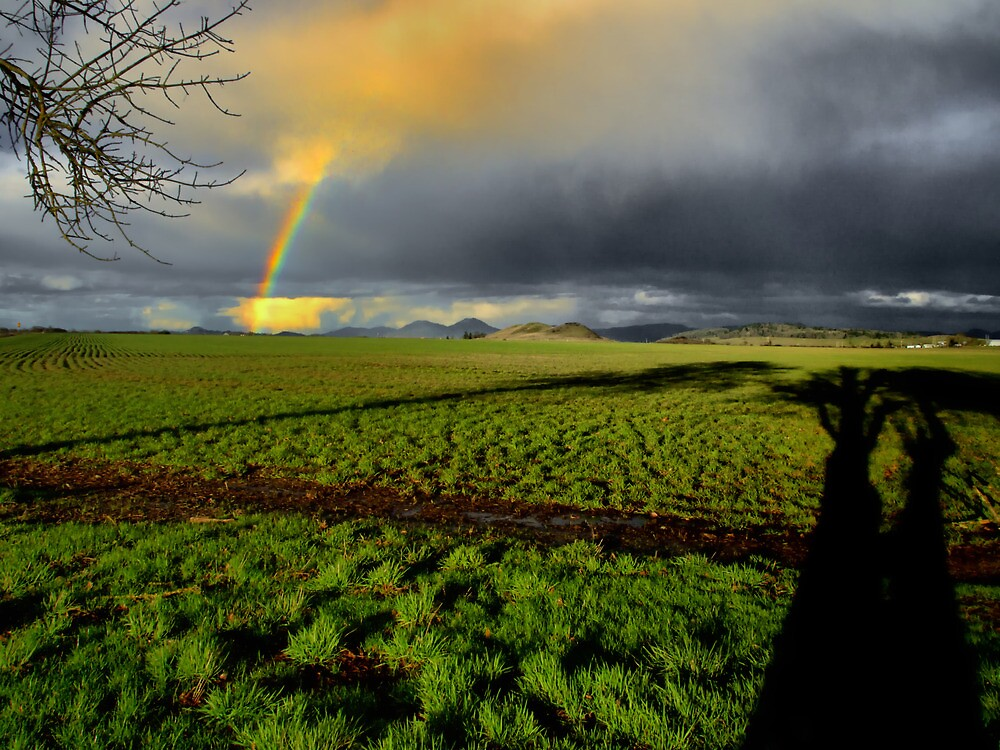 The Long Shadows by Charles & Patricia   Harkins ~ Picture Oregon