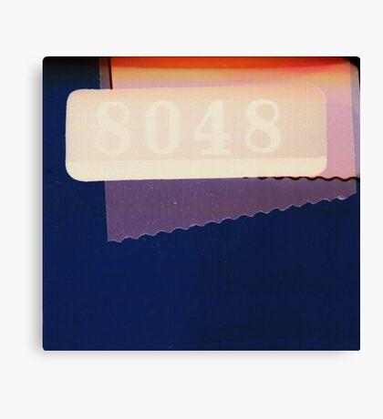 8048 Canvas Print