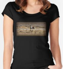 Freedom at Swan Lake Women's Fitted Scoop T-Shirt