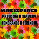 War is Peace, Freedom is Slavery, Ignorance is Strength by David Rozansky