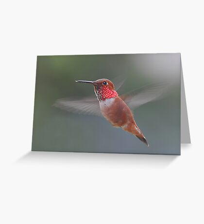 Four-wings Greeting Card