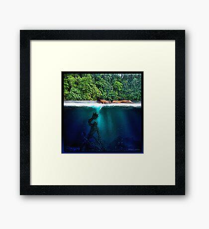 The Black Lagoon Framed Print