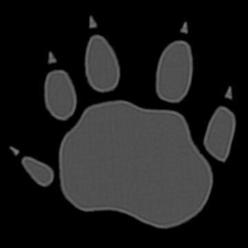 Tasmanian devil footprint by Kel2