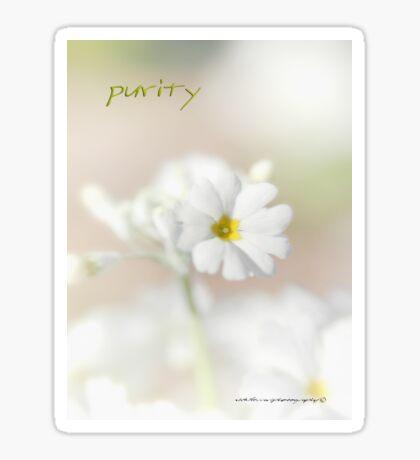Purity STICKER © Vicki Ferrari Photography Sticker