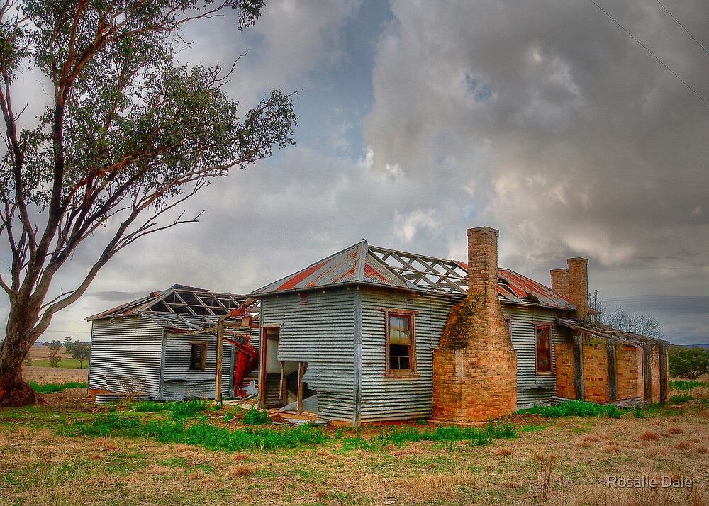 Remnant of Yullundry ... NSW by Rosalie Dale