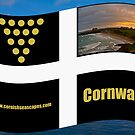 Cornish Flag by Brian Roscorla