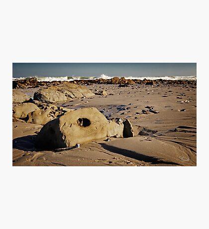 Mussel Graveyard Photographic Print