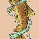 Salmon by Amanda Zito