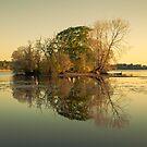 Henderland Island by Brian Kerr