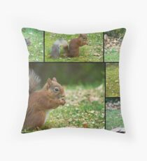 Red Squirrels Of Rothiemurchus Throw Pillow