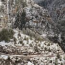 Snow Storm in the Mountains near Sedona, Az by Pete Paul