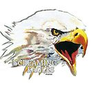 Screaming Eagles by stephisinsanity