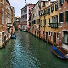 Venice Canal  by John Lines