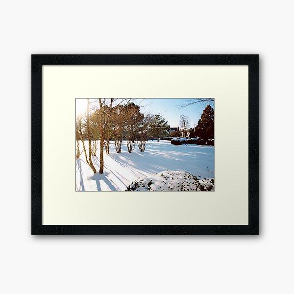 Serenity And Sunshine Framed Art Print