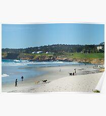Popular beach Poster