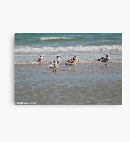 Enjoying the Seabreeze Canvas Print