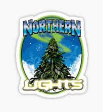 Northren Lights  Sticker