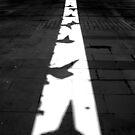 Traffic cones in shadow by GreyCard