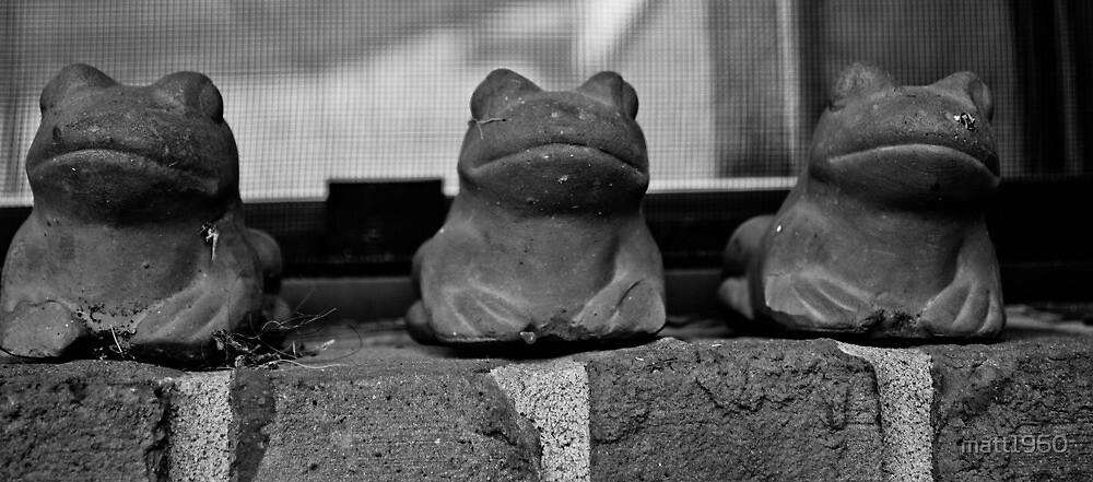 Three frogs on a wall by matt1960