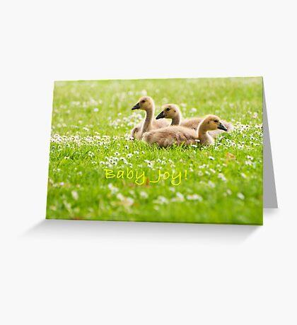 Baby Joys Greeting Card