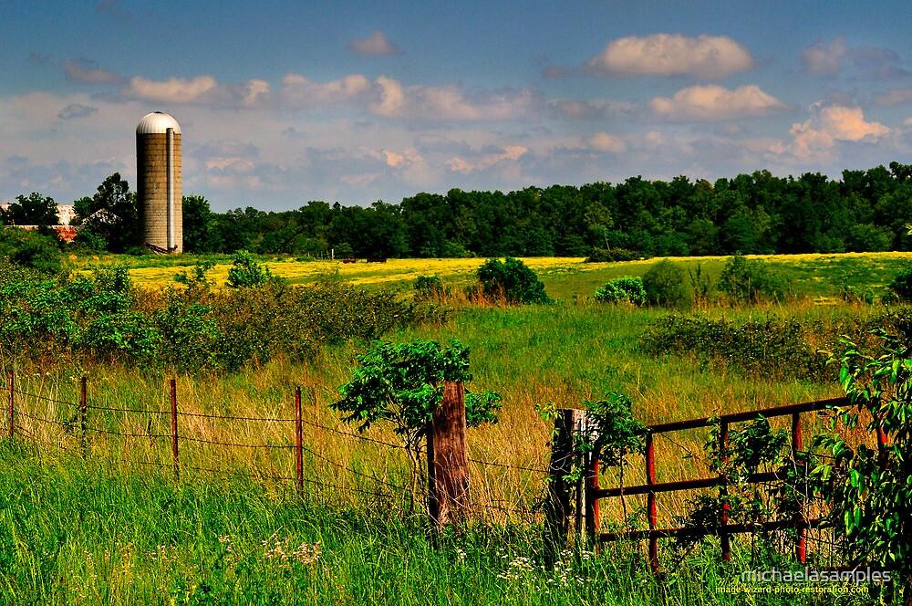 Rural View by michaelasamples
